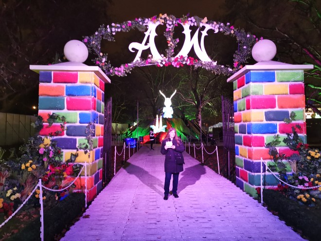 Alice in Winterland entrance