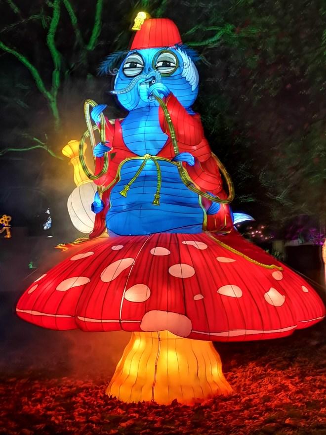 Alice in Winterland - caterpillar