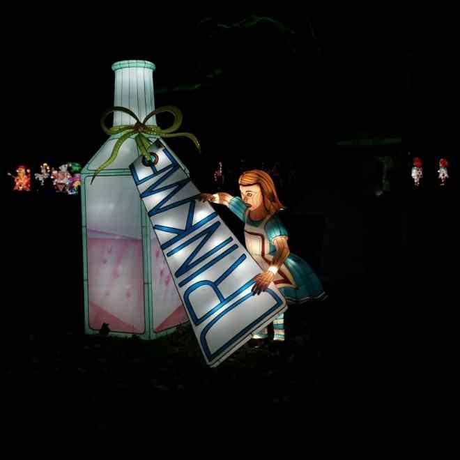 Alice in Winterland - drink me Alice