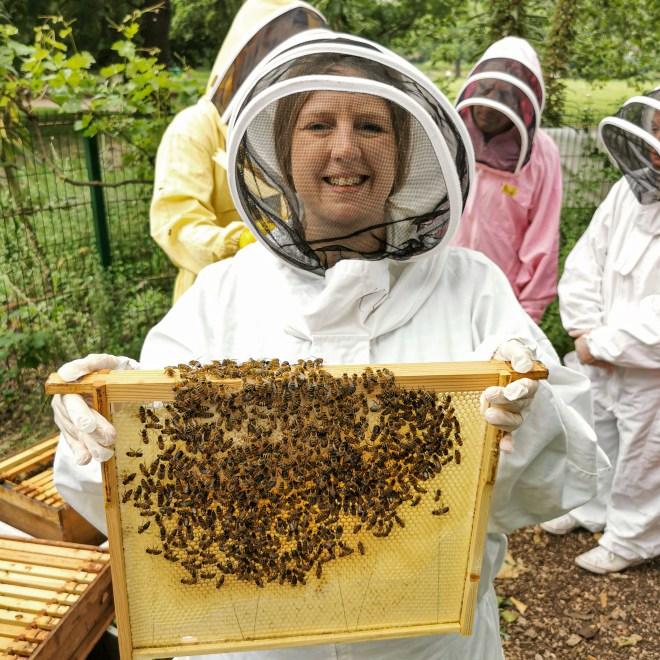 Hiver Honey bees at Bee Urban