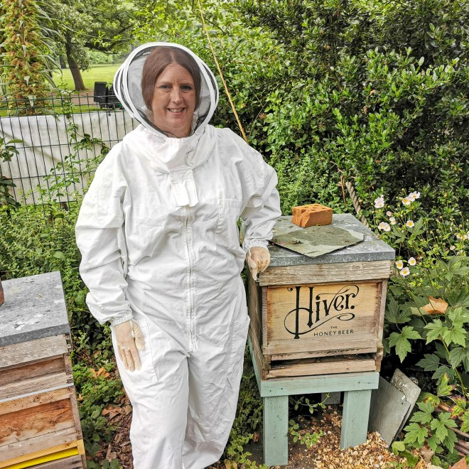 Hiver bees hive
