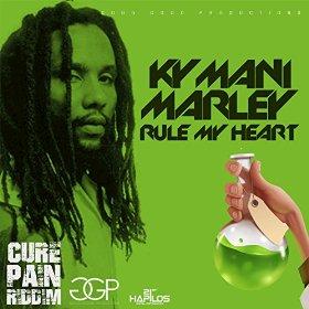 Rule My Heart Music Video