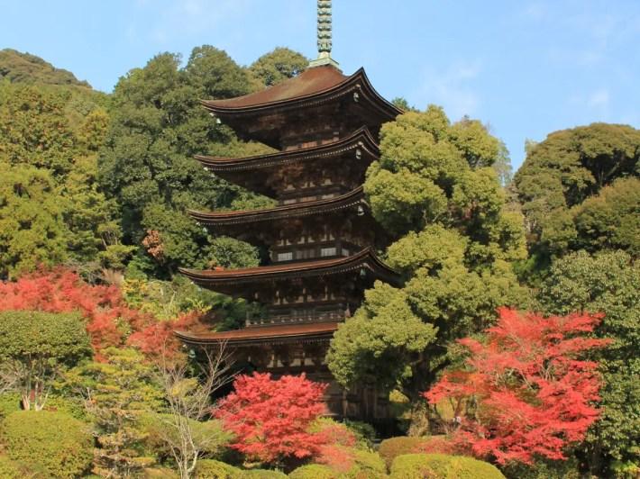 瑠璃光寺五重塔と紅葉