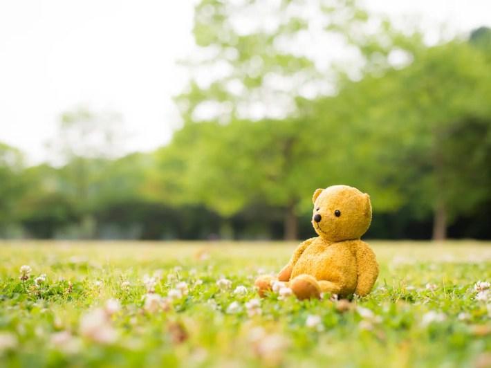 ぬいぐるみ 芝生に座るテディーベアー