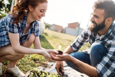 夫婦で農家デビューのイメージ