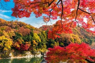 長瀞 秋の紅葉