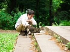 猫を可愛がる猫好き男子