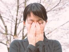 桜の下で泣く元カレに未練タラタラ彼女