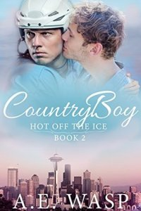 Gay Hockey Romance Novels Country Boy by A. E. Wasp