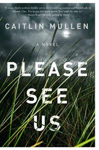 most anticipated books of 2020 please see us by caitlin mullen