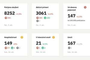 Статистика коронавируса в Словении