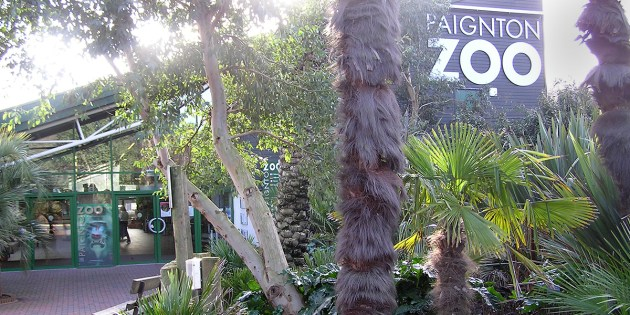paignton-zoo-jobs