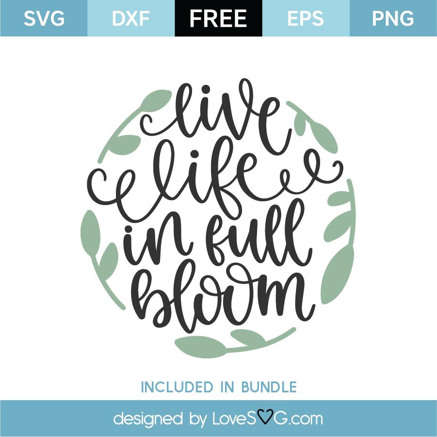 Download Free Live Life In Full Bloom SVG Cut File - Lovesvg.com