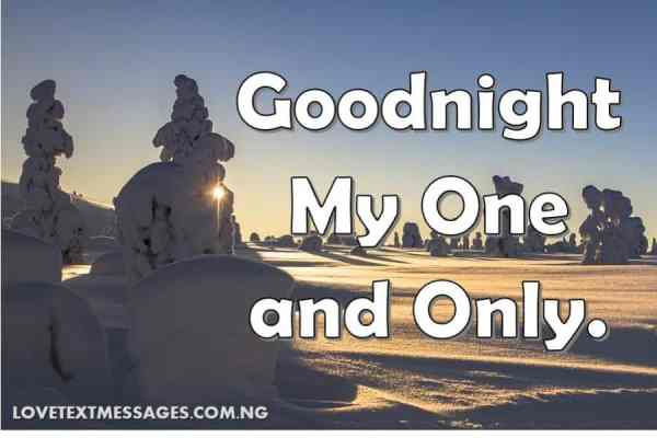 Romantic Good Night Love Quote