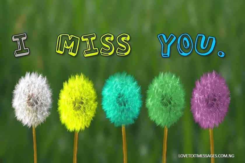 Miss You SMS for Wife