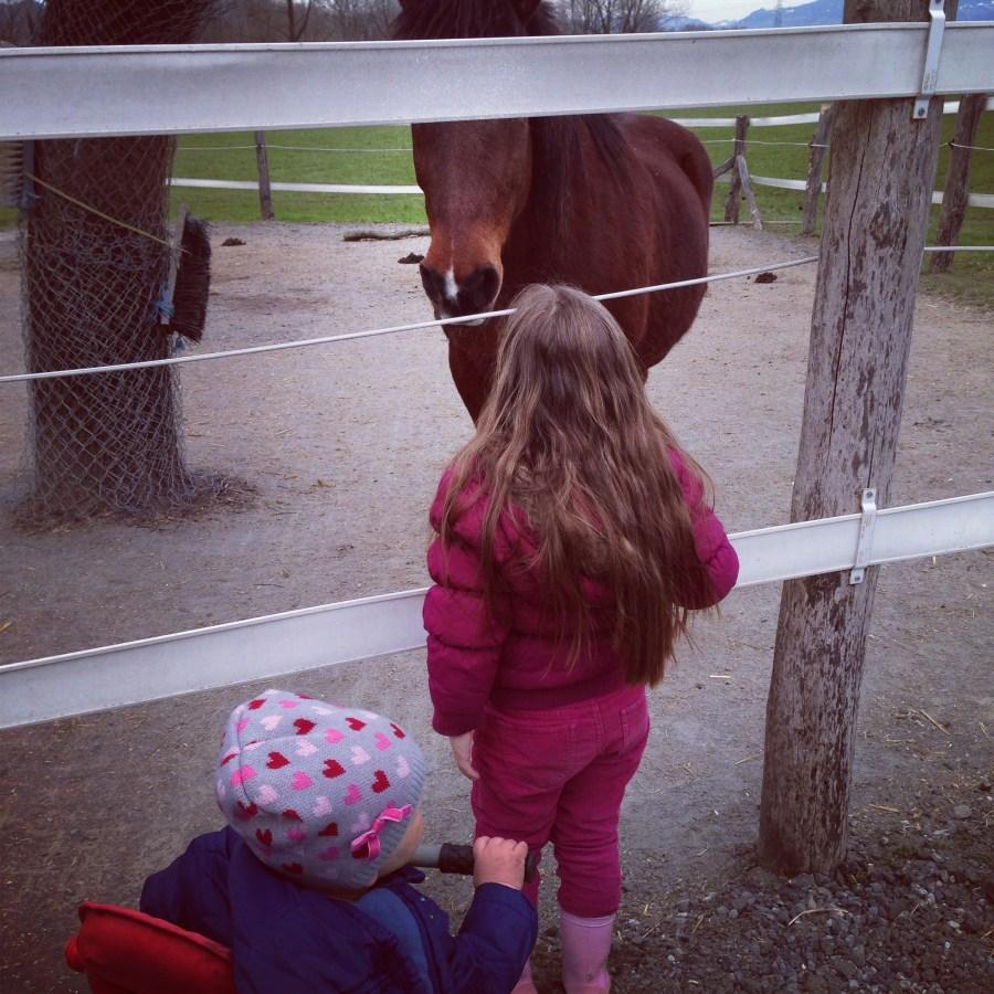 Aan de wandel met de meiden en dan stoppen we altijd even bij de paardjes.