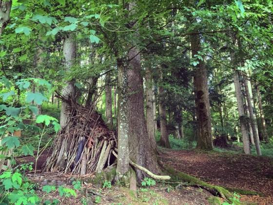 We kwamen zelfs dit verstopte hutje tegen in het bos