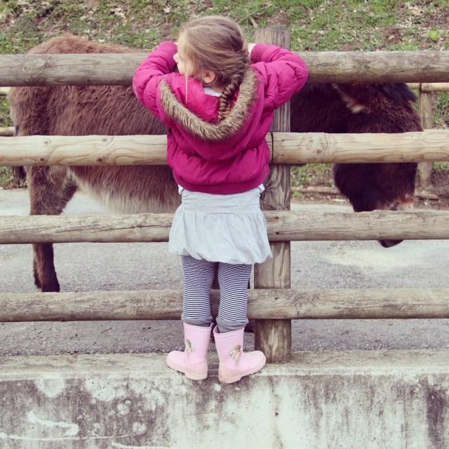 Zondag gingen we naar een veredelde kinderboerderij in Oostenrijk :) Je las er afgelopen maandag al alles over!