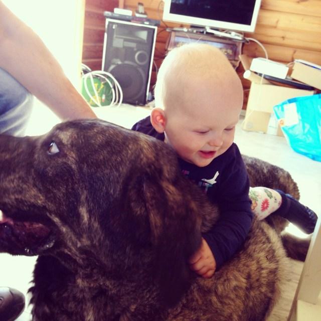 Floris zette Liza ook nog even op Mello. Wat een lieverd is die hond toch!