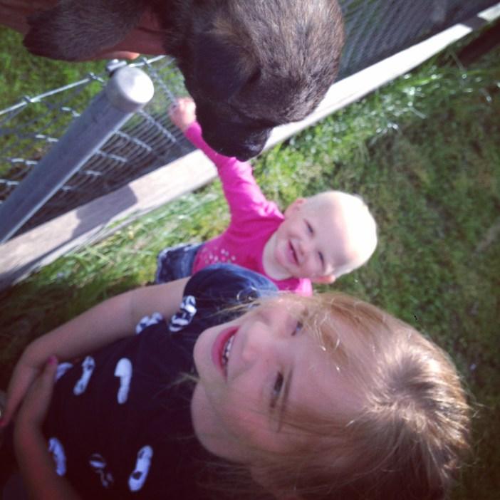 Nadat Eva 's ochtends haar inentingen tegen tekenbeten heeft gekregen (wat een toeval!) en we Liza's plek na hebben laten kijken, was het tijd voor wat leuks. De puppies van de buren!