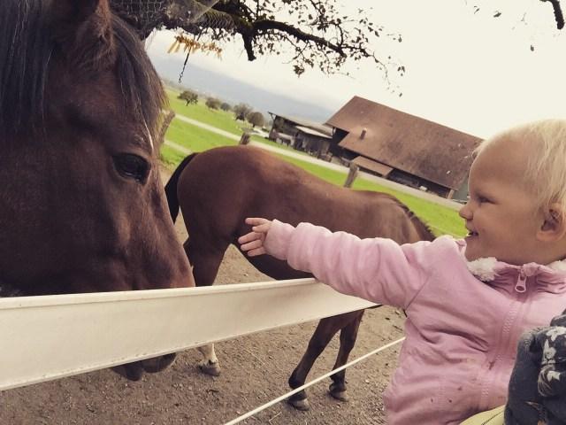Liza wel! Helaas wilden de paardjes niet zo knuffelen met haar.