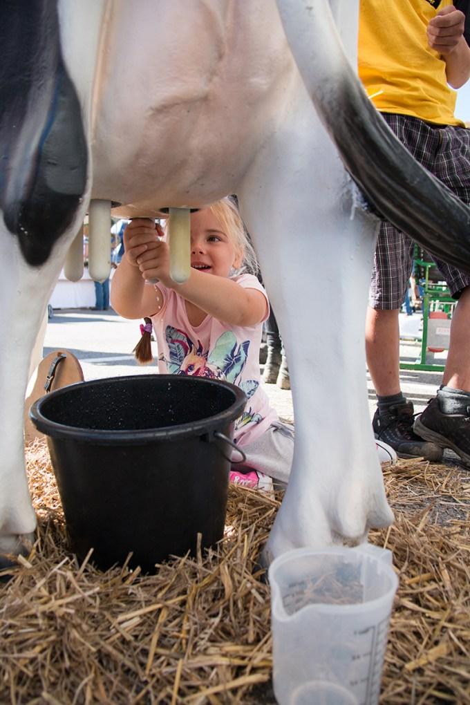 Het melken van de koe was ook wel erg tof!