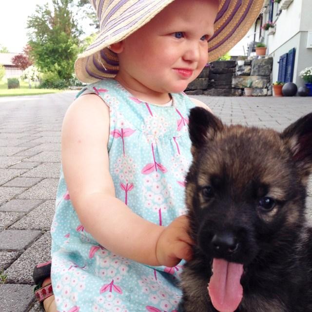 En terwijl Eva ergens in de straat aan het spelen was, mochten wij spelen met de pups van de buren.