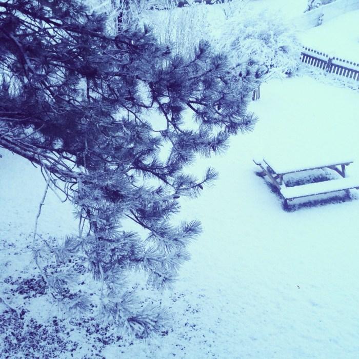 En dan word je op zondagochtend wakker in een witte wonderwereld. FANTASTISCH
