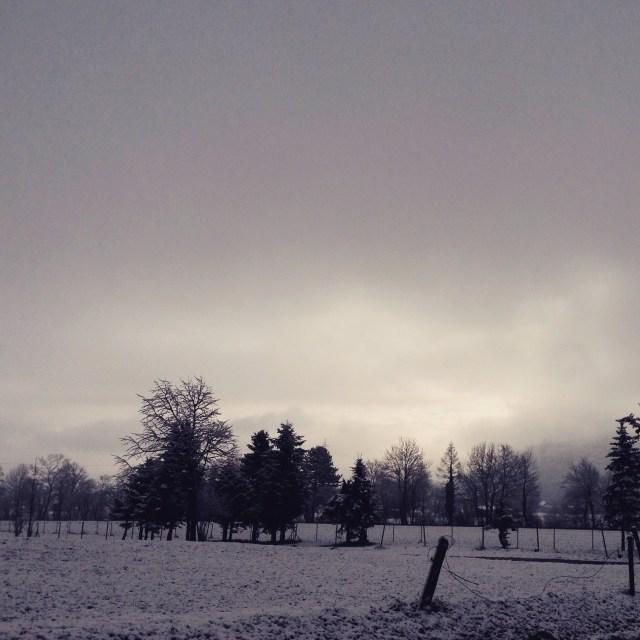 Het hardlopen was fantastisch, de uitzichten waren zo mooi. Het leek wel een zwart-wit wereld.