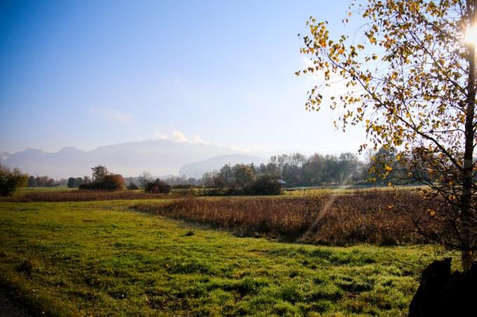 Witte bergtoppen, groene weilanden en bomen die langzaam verkleuren naar geel en rood