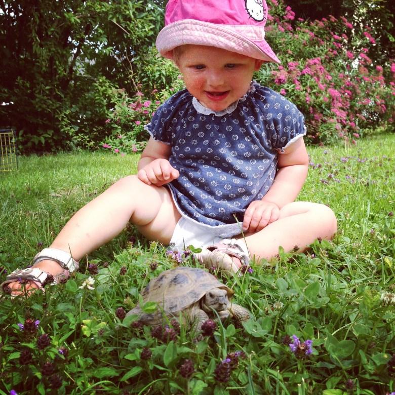 Op maandag laten we de schildpad los. Volop pret bij Liza natuurlijk