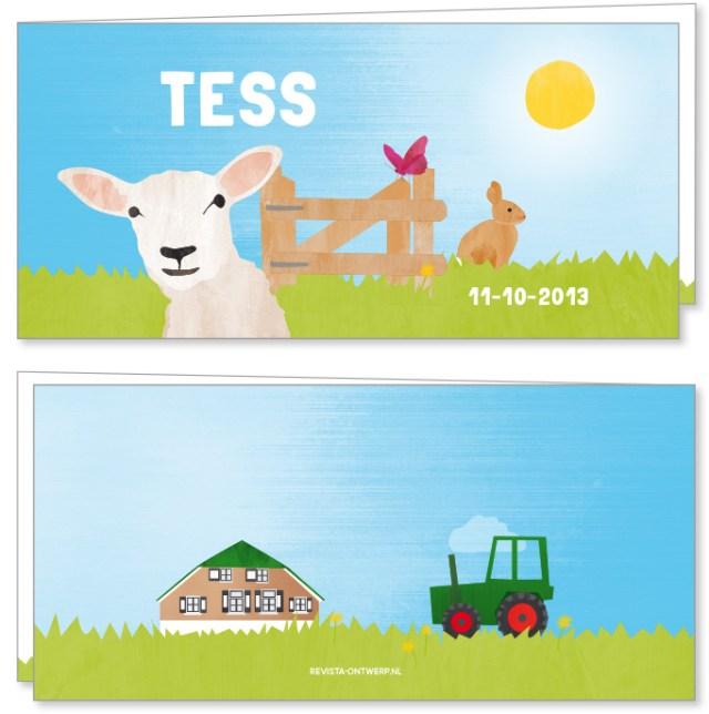 Tess-kaartje