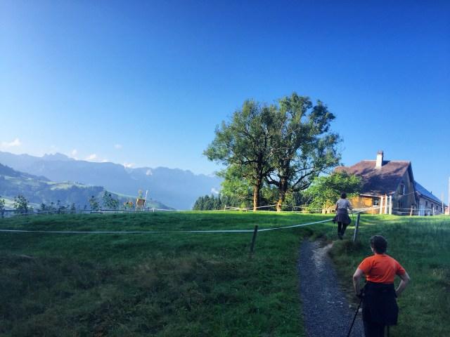 Op maandag maken weet de wandelgroep een leuke wandeling. Net pittig genoeg en met fantastische uitzichten