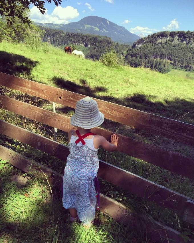 Nadat ik geslapen had en we een beetje aan de hitte gewend waren, gingen we naar het Wildpark in Feldkirch