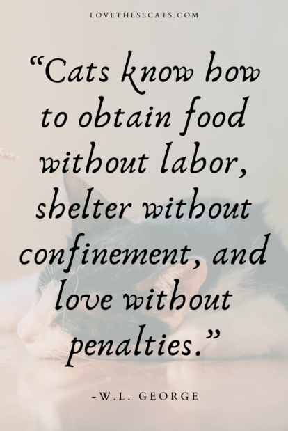 """""""Cats know how to obtain food without labor, shelter without confinement, and love without penalties."""" -W.L. George"""