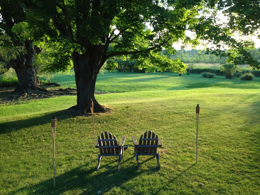 Nantucket green backyard.
