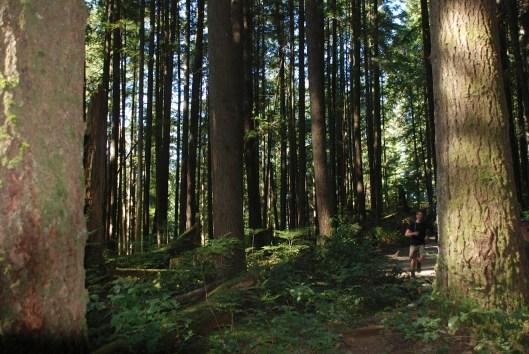 Our walk around Vancouver Buntzen Lake.