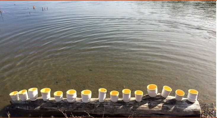 Little yellow cups on a log at the water's edge.