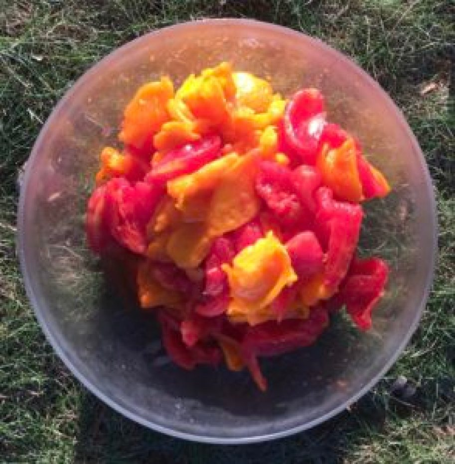 Deseeded tomatoes in a plastic bowl on the grass.