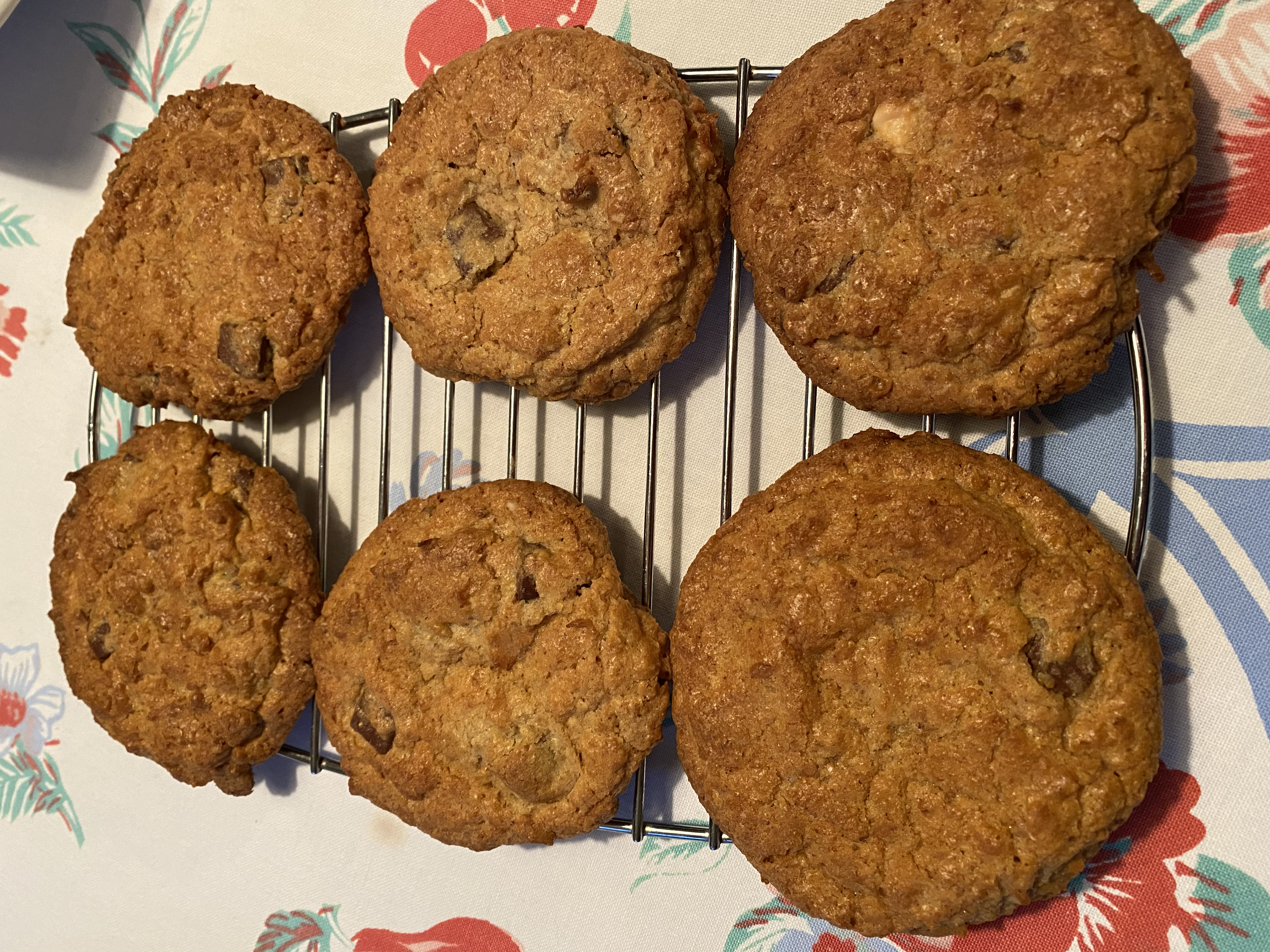 Wheat Germ Saucer Cookies cooling on a rack.