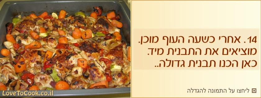 עוף בתנור בסילאן