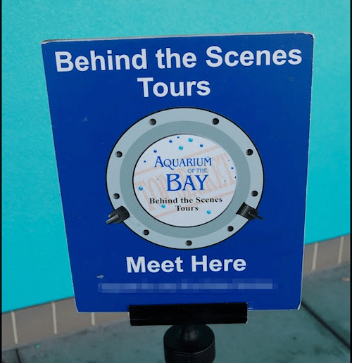 Behind-the-Scenes Tours at Aquarium of the Bay, San Francisco - photo © LoveToEatAndTravel.com
