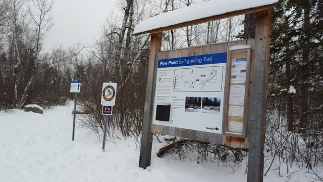 Pine Point Self-guiding trail