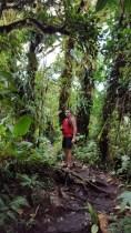 Cerro Chato Trail (20)