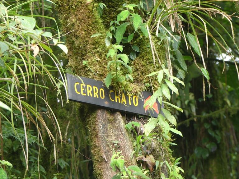 Cerro Chato Trail (29)