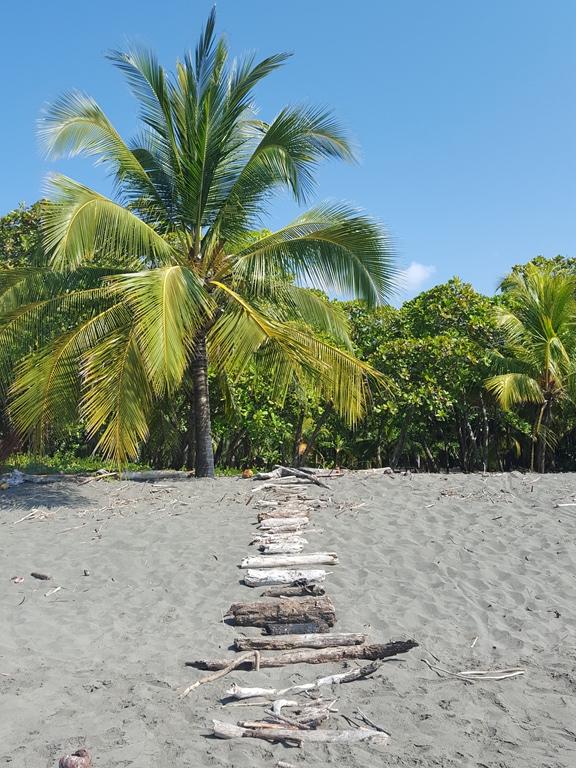 matapalo beach (2)