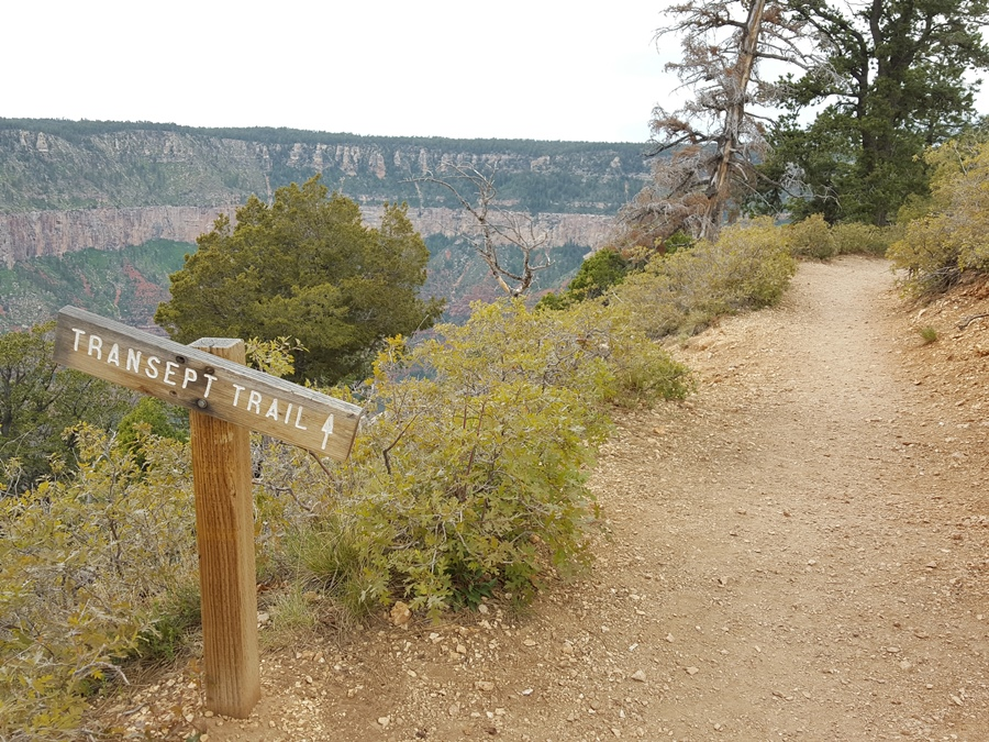 Great Canyon - North Rim (13)