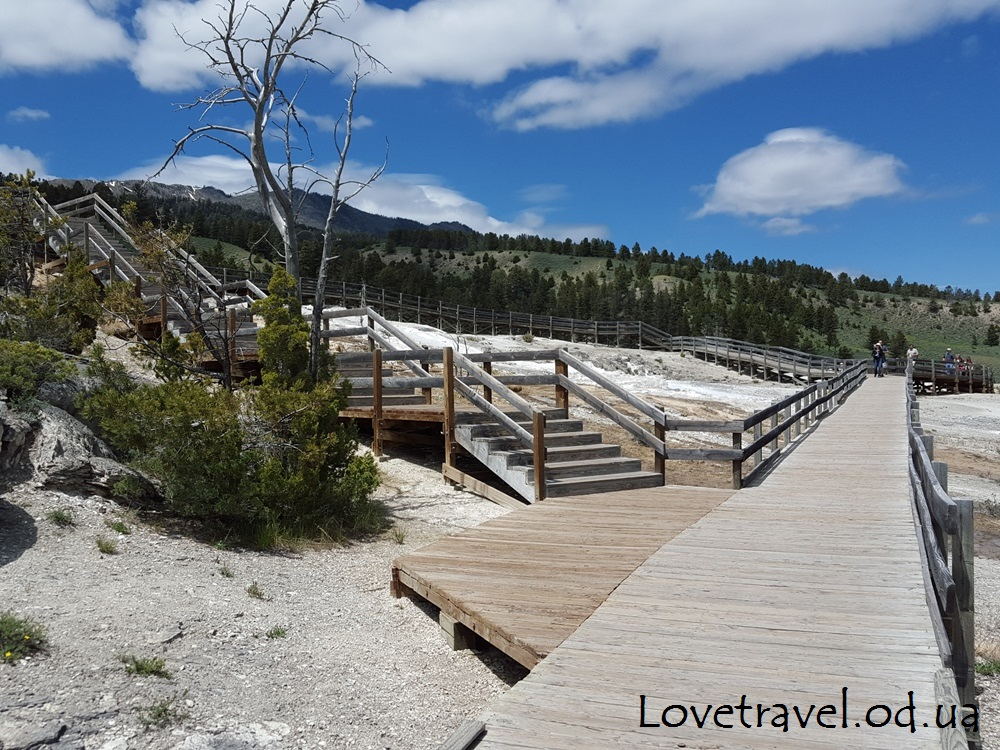 mammoth-hot-springs-17