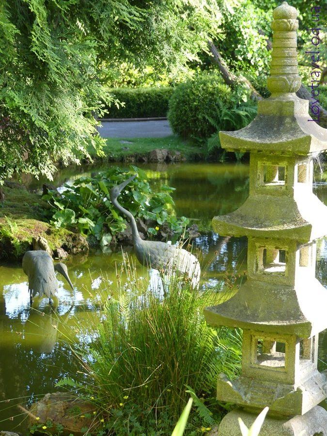 -Japanese tea garden