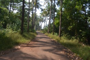 real Goa